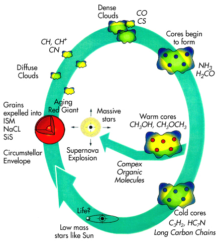 oxygen cycle essay